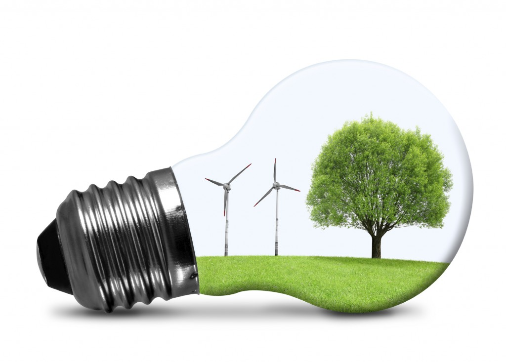Eco Fuel - iStock_000054255974_Medium