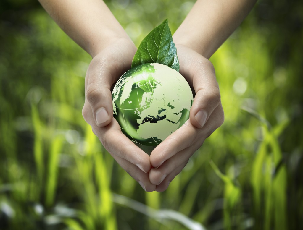 Green World in Hands - iStock_000026077725_Medium
